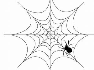 draw a web for the spider coloring pages