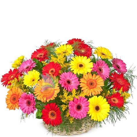cesti di fiori moda cestini di fiori ou36 pineglen