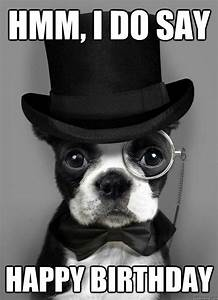 17 best Birthday Animals images on Pinterest | Birthday ...