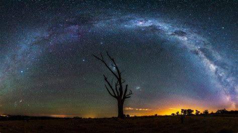 Starry Night Stars Landscape Milky Way Trees