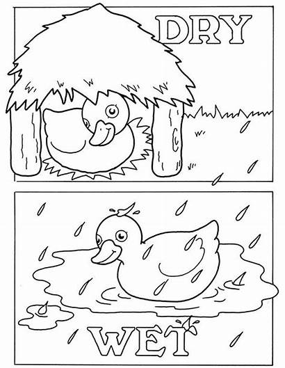 Coloring Opposites Pages Fun Worksheets Preschool Colouring