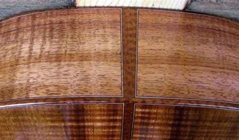Anybody Hear Of Snakewood The Acoustic Guitar Forum