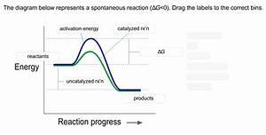 32 The Diagram Below Represents A Spontaneous Reaction  U03b4g