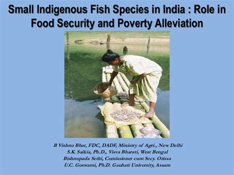 small indigenous fish species  india role  food