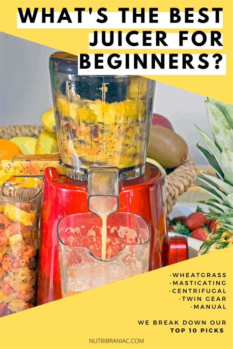 beginners juicers juicer