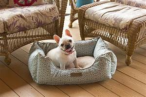 top 5 best dog beds for small medium size dogs o petpampa With best dog beds for medium dogs