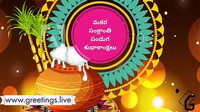 Telugu Sankranti Festival Greetings Makara Sankranthi Wishes