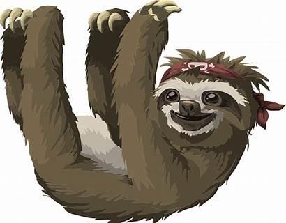 Names Sloth Sloths Funny Cartoons Inspired Pet