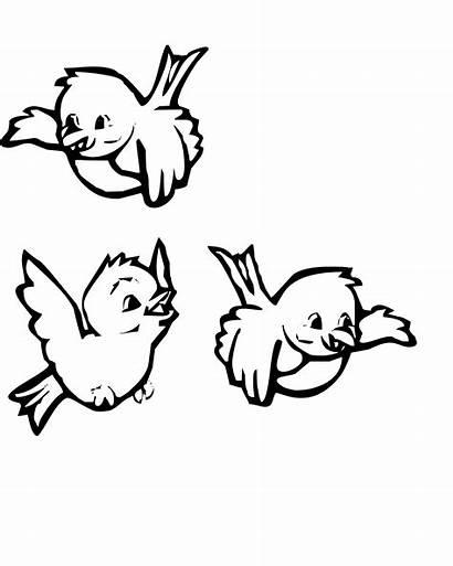 Birds Coloring Pages Printable Bird Winter Borders