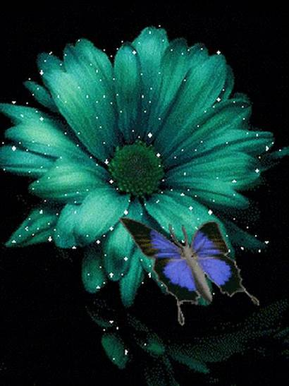 Flowers Glitter Gifs Teal Butterfly Flower Unique
