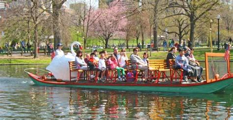 Swan Boats Charles River by Taj Boston Hotel Luxury Plus A Location