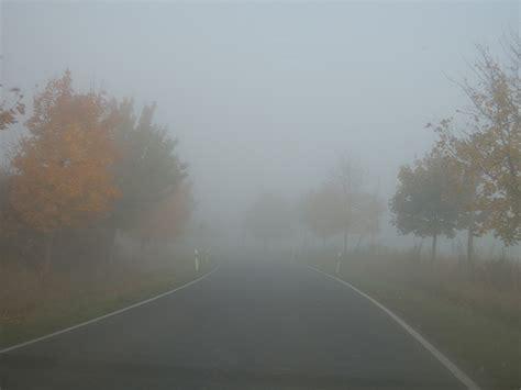 bunter herbst mit nebel putzlowitscher zeitung