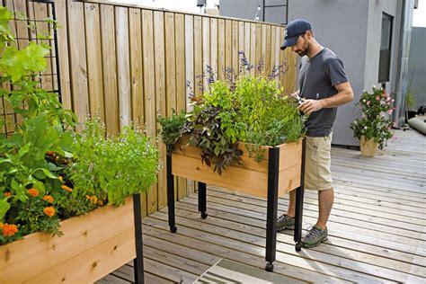 herb garden designs  plant lists gardeners supply