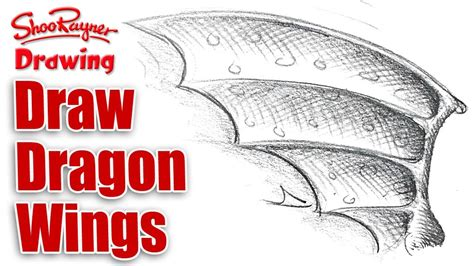 Drawing tutorials of dragon wings. How to draw Dragon Wings? - YouTube