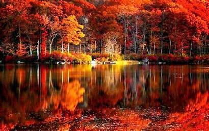 Autumn Desktop Leaves Lake Near