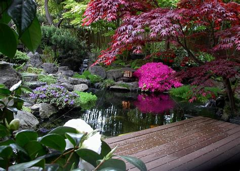 Japanese Gardens Rockford by First Step To Starting Your Japanese Garden Landscape