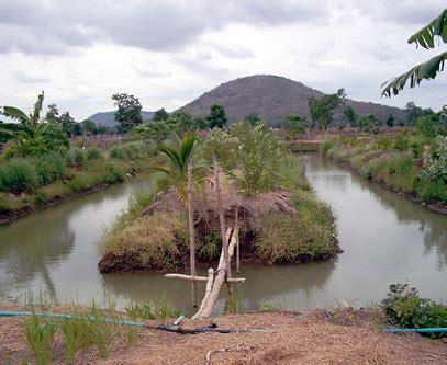 Thailand   Nakhon Sawan Province   Watershed Restoration
