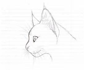 cat sketch realistic cat sketch by lasania on deviantart