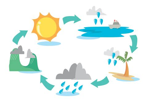 Diagram Of A Water by Water Cycle Diagram Vector Set Free Vector