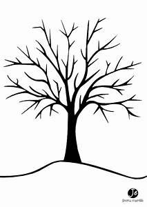 Feuilles D Automne à Imprimer : ides de dessin arbre sans feuille a imprimer galerie dimages ~ Nature-et-papiers.com Idées de Décoration