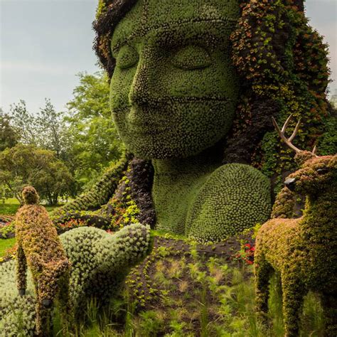 plant sculpture discover the amazing plant sculptures installed in montreal gardens photo gallery