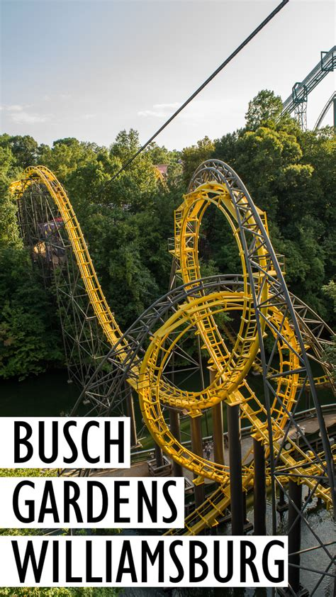 bush gardens williamsburg busch gardens williamsburg ride reviews and tips for