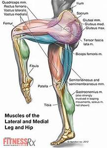 What muscles do jump squats work out, severe neck shoulder ...