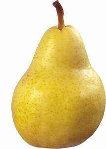 Pear PNG images free download  Pear
