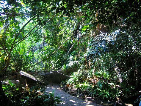 fileindonesian jungle zoo praguejpg wikimedia commons