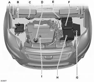 Motorraum -  U00dcbersicht - 2 0l Duratorq-tdci  Dw  Diesel - Wartung