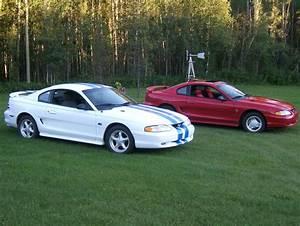 GT & V6 | Ford Mustang Photo Gallery | Shnack.com