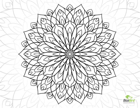 dahlia coloring  dahlia coloring