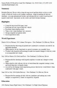 Summary Example For Resume Professional Delivery Driver Templates To Showcase Your