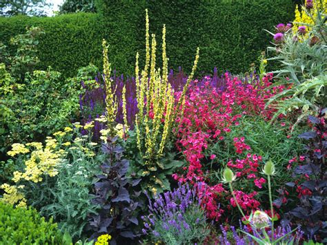 how to design a herbaceous border how to design and plant a herbaceous border saga