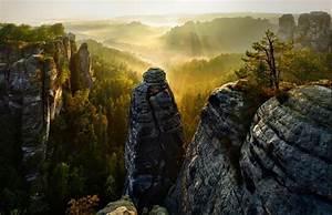 Forest, Cliff, Mist, Valley, Trees, Sunrise, Sun, Rays