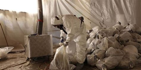 properly address asbestos  lead paint removal
