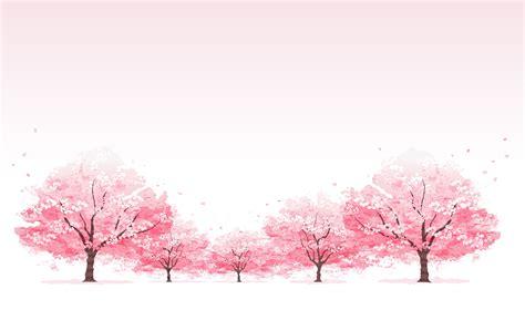 Light Wood Wallpaper Hd Essex County Cherry Blossom Festival