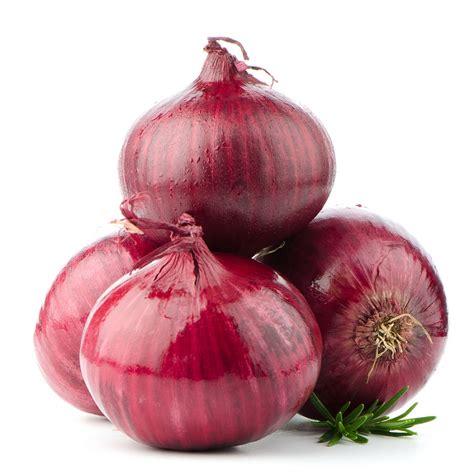 minta bawang cara menanam bawang merah cara budidaya bawang merah cara
