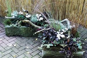 pflanzen fr den balkon winterhart die neueste innovation With französischer balkon mit gräser garten anlegen
