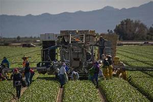 AirTalk® | Audio: Under CA proposal, farm, service workers ...
