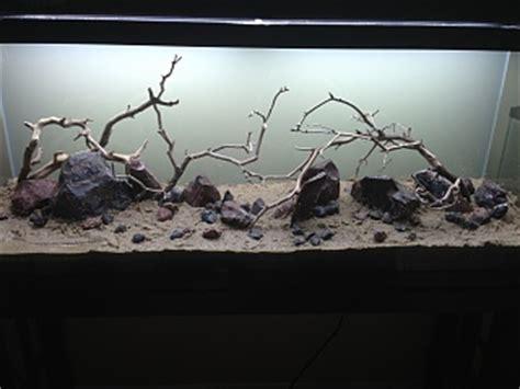 privacy window film    tank aquarium