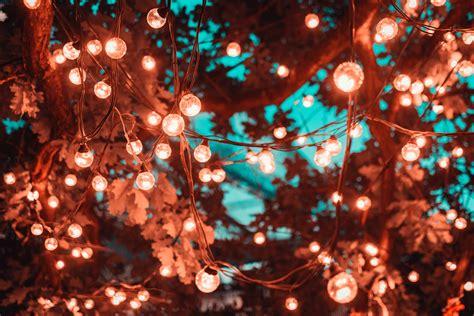 1000 interesting lights 183 pexels 183 free stock