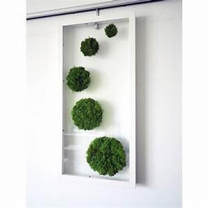 17 best images about moss art on pinterest gardens for Moss wall art
