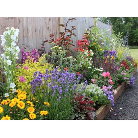 how to create a cottage garden border english cottage border