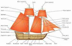 Labeled Diagram Caravel