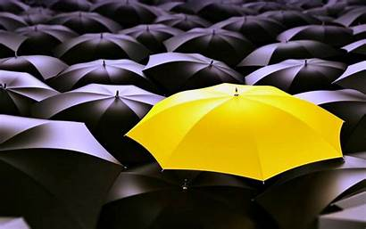 Unique Desktop Wallpapers Yellow Background Umbrella Abstract