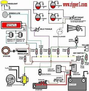 What Is The Basic Ecu Wiring Diagram Of Any Car  Bike