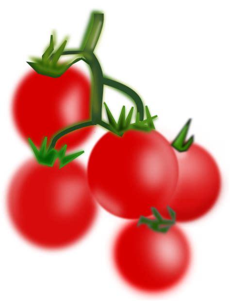 ミニトマトイラスト無料 に対する画像結果