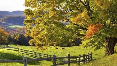 Scenery Desktop Nature Autumn Landscapes Scenic Wallpapers