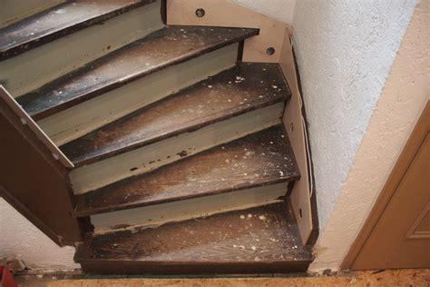 Treppe Neu Machen by Treppenrenovierung Treppensanierung Selber Machen Kein